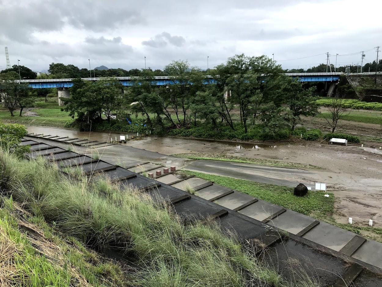 木曽川右岸堤防 豪雨増水 化石林公園