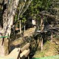 みのかも健康の森にツリートップアドベンチャーが誕生!